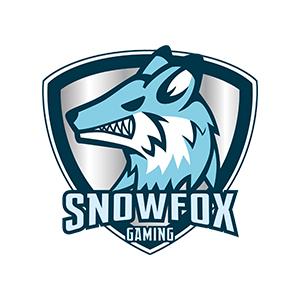 SNOWFOX GAMING