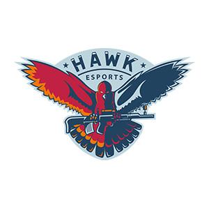 HAWK ESPORTS