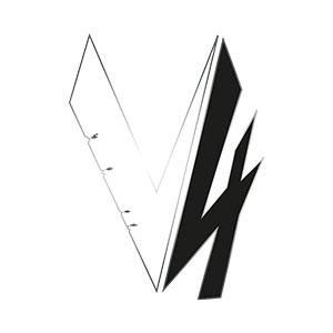 TEAM V4